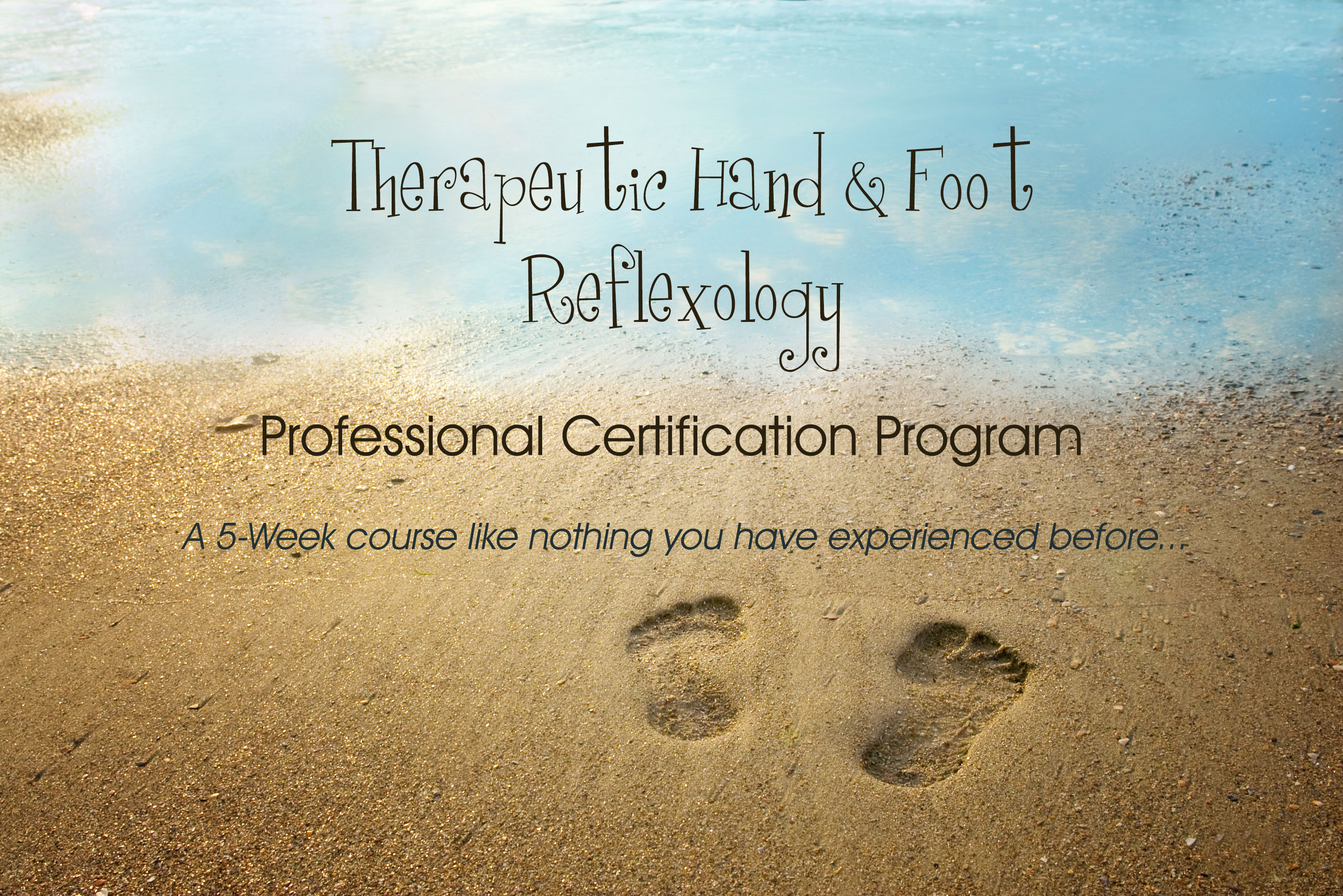 Academy Anicent Reflexology Certification Slider 4 Academy Of
