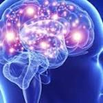 Brain Development and Stress