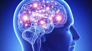 bigger neurons